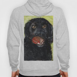 Dog with Red Ball Hoody