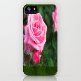 Pink Roses in Anzures 1 Blank P1F0 iPhone Case