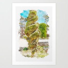 Aquarelle sketch art. Spiral conifer and palm trees and in Cadiz park Art Print