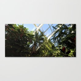 A taste of the tropics in Wisconsin Canvas Print