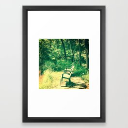 Alone In The Wild Framed Art Print