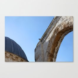 Bird in the Temple Mount Canvas Print