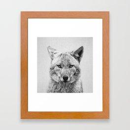 Coyote - Black & White Framed Art Print