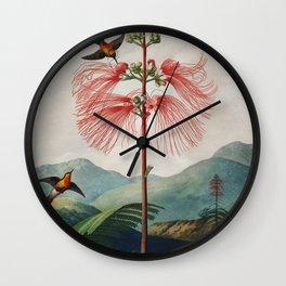 Robert John Thornton - Large–Flowering Sensitive Plant Wall Clock