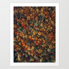 ColorFall Broccoli 2 Art Print