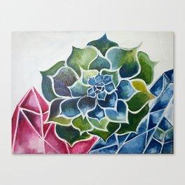 Succulents & Crystals Canvas Print