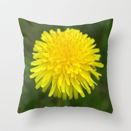 Yellow Dandilion Throw Pillow