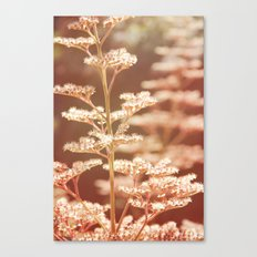 Summer tiers Canvas Print