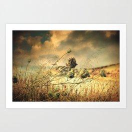 Sad Song Of The Wind Art Print