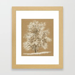 Winter tree 02 Framed Art Print
