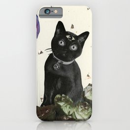 Ask the Cat iPhone Case