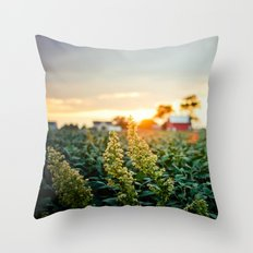Rustic Midwest Farm  Throw Pillow