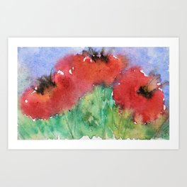 Fresh Poppies Art Print
