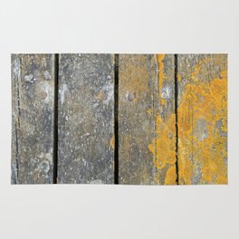 Ocean Weathered Wood With Lichen Rug