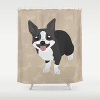 boston terrier Shower Curtains featuring Boston Terrier by Sarah