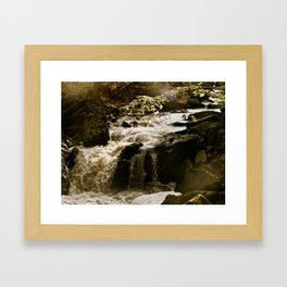 Beamer Falls Framed Art Print