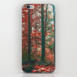 into the woods 11 iPhone Skin