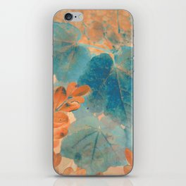 Blue and Orange Autumn Leaves iPhone Skin