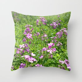 Watercolor Flower, Dames Rocket 01, Boulder, Colorado Throw Pillow