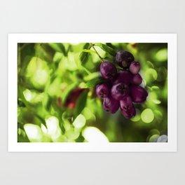 Eternal Flowers 2 Art Print