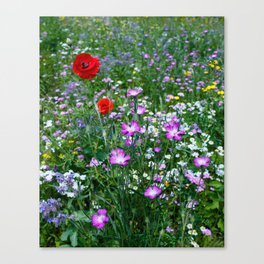 Wild Flower Meadow Canvas Print