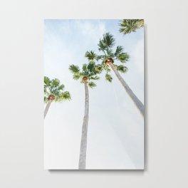 PALM TREES | ST. PETE, FL Metal Print
