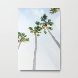 PALM TREES | ST. PETE, FL Metal Print