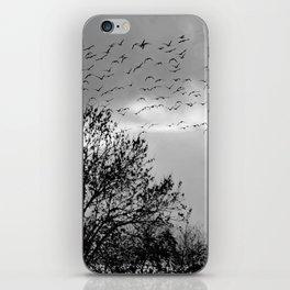 wildlife iPhone Skin
