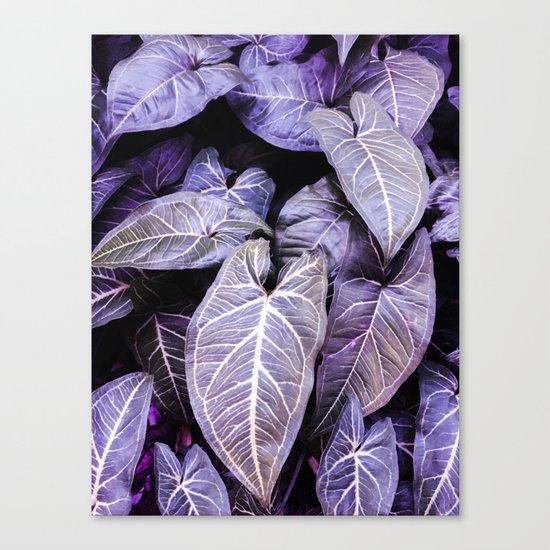 Jungle leaf - amethyst Canvas Print