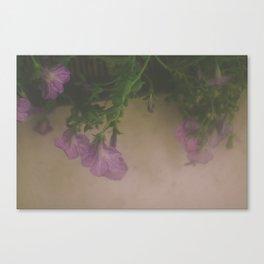 Melancholia 01 Canvas Print