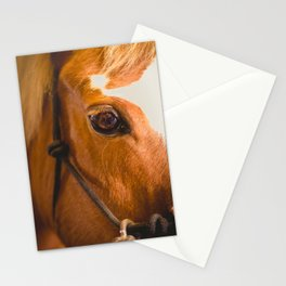 the horse's eye. Stationery Cards