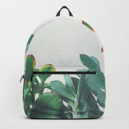Crassula Group Backpack