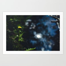 Reflection in the river Art Print