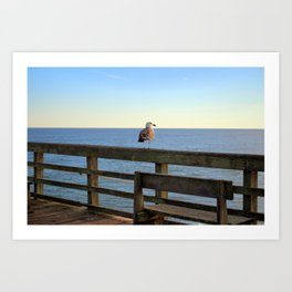 Perched On The Pier Art Print