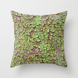 Cracked paint Throw Pillow