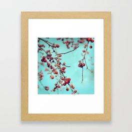 Hawberry Winter Tree Framed Art Print