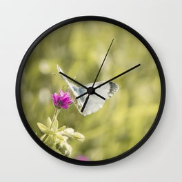 Butterfly on a spring flower Wall Clock