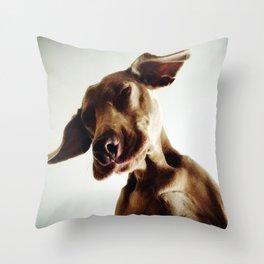 Weimaraner Flappy Ears Throw Pillow