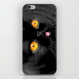 Blackberry of Genius Catt iPhone Skin