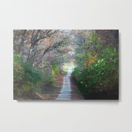Country Road In The Fall Metal Print