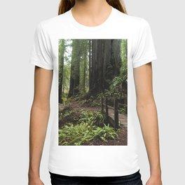 Redwood Roaming - California Wanderlust T-shirt