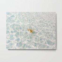 Florida White Sand Metal Print