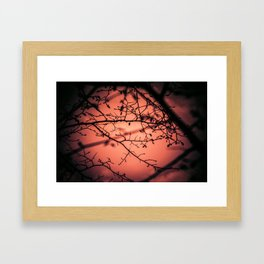 Sunset... Framed Art Print