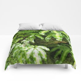 The Fernery Comforters