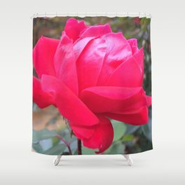 Bright Pink Autumn Rose Shower Curtain