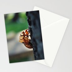 Outside My Shell Stationery Cards