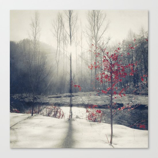 winter's rHapsody Canvas Print