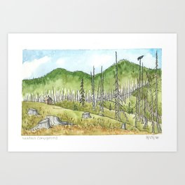 Meadows Campground After Burn Art Print