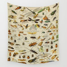 Insects Vintage Scientific Illustration French Language Encyclopedia Lithographs Educational Wall Tapestry