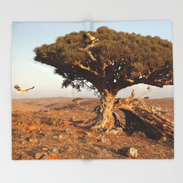 Socotra — dreams of the Lost Paradise Throw Blanket